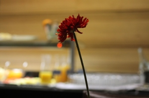 bilbao hotel sercotel coliseo flor desayuno (2)